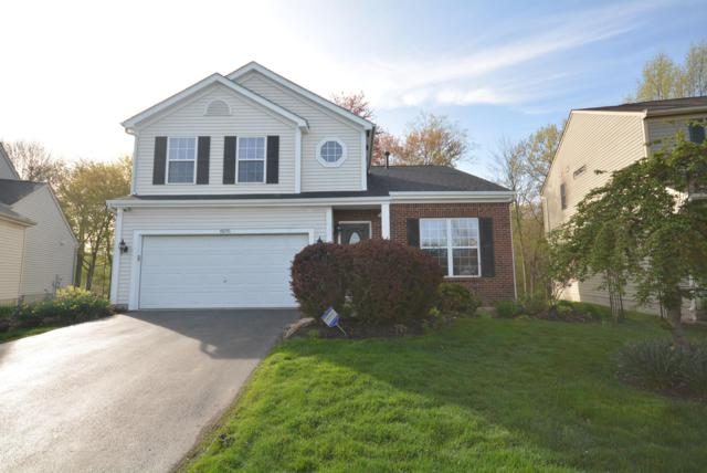 8595 Old Ivory Way, Blacklick, OH 43004 (MLS #219013434) :: Berkshire Hathaway HomeServices Crager Tobin Real Estate