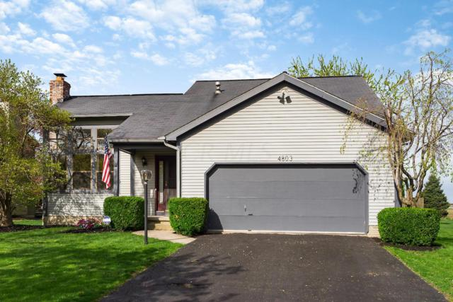 4803 Brixston Drive, Hilliard, OH 43026 (MLS #219013450) :: The Clark Group @ ERA Real Solutions Realty