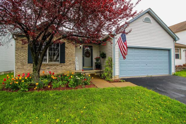 1896 Forestwind Drive, Grove City, OH 43123 (MLS #219013482) :: The Clark Group @ ERA Real Solutions Realty
