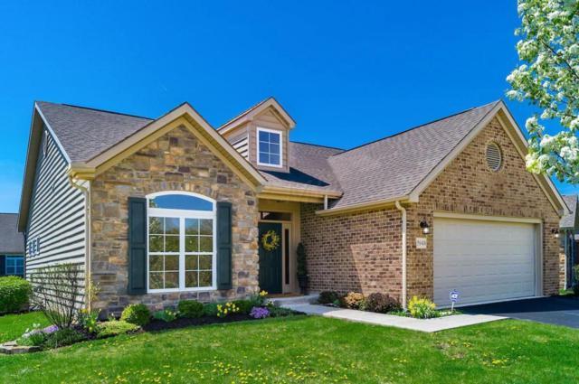 5948 Parchment Drive, Westerville, OH 43081 (MLS #219013682) :: Shannon Grimm & Partners