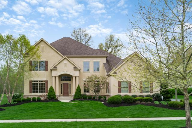 6699 Raynor Court, Dublin, OH 43017 (MLS #219013701) :: RE/MAX ONE