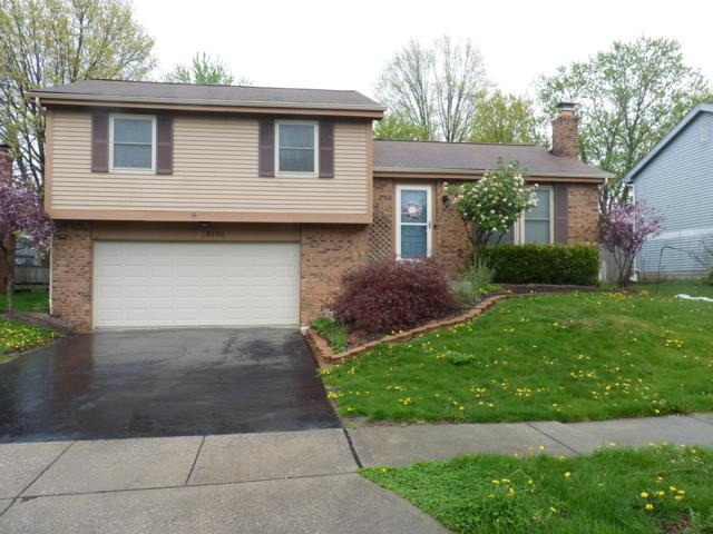 8900 Walton Lane, Powell, OH 43065 (MLS #219013747) :: Keller Williams Excel