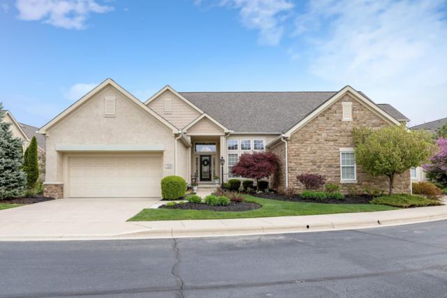 7620 Bluff Bend Drive, Columbus, OH 43235 (MLS #219013837) :: Signature Real Estate