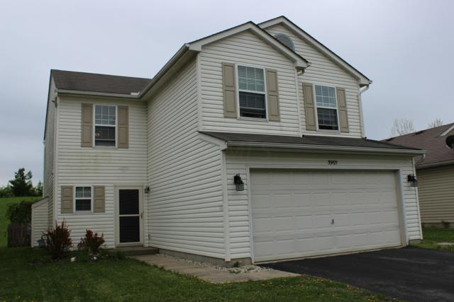3969 Genteel Drive, Grove City, OH 43123 (MLS #219013846) :: The Clark Group @ ERA Real Solutions Realty