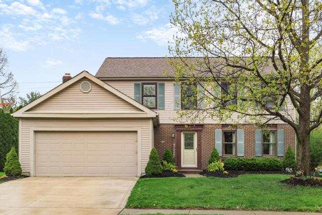 242 Bluejay Drive, Columbus, OH 43235 (MLS #219014099) :: Signature Real Estate