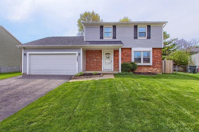 1887 New Market Drive, Grove City, OH 43123 (MLS #219014268) :: Keller Williams Excel