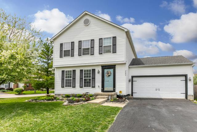 2285 Shelby Lane, Hilliard, OH 43026 (MLS #219014314) :: Shannon Grimm & Partners