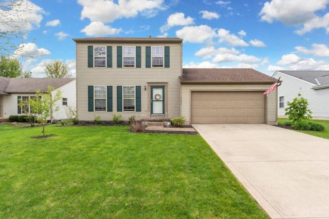 9095 Holquest Drive, Lewis Center, OH 43035 (MLS #219014396) :: Berkshire Hathaway HomeServices Crager Tobin Real Estate