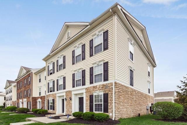 5546 Crystal Falls Street, Dublin, OH 43016 (MLS #219014522) :: Signature Real Estate