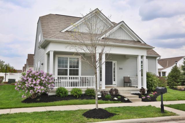 6062 Caplinger Avenue, Westerville, OH 43081 (MLS #219014658) :: Berkshire Hathaway HomeServices Crager Tobin Real Estate