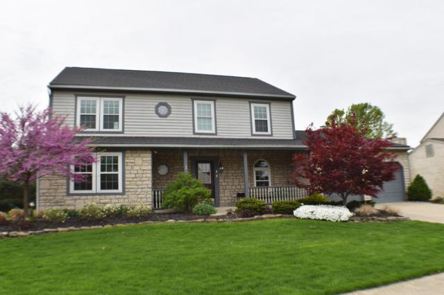 685 Middlebury Way, Powell, OH 43065 (MLS #219014696) :: Signature Real Estate