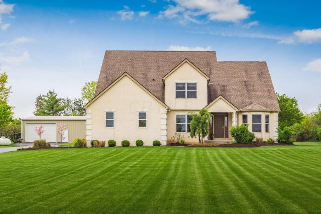 8351 London Groveport Road, Grove City, OH 43123 (MLS #219014827) :: Signature Real Estate