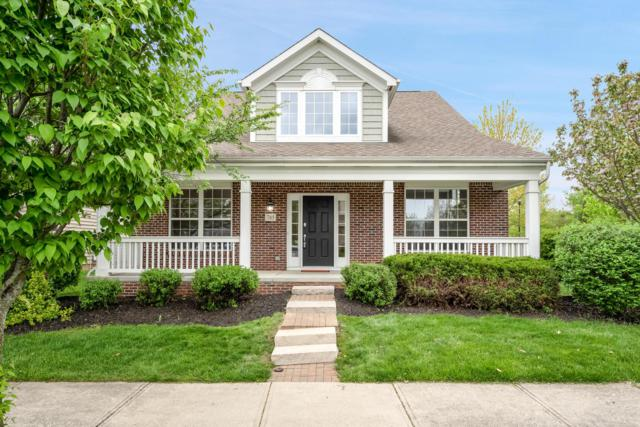 785 Woodbend Drive, Westerville, OH 43082 (MLS #219014968) :: Keller Williams Excel