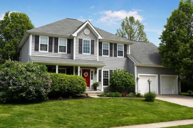 8073 Chateau Lane, Westerville, OH 43082 (MLS #219015171) :: Keller Williams Excel