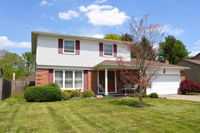 7034 Roundelay Road N, Reynoldsburg, OH 43068 (MLS #219015227) :: Huston Home Team