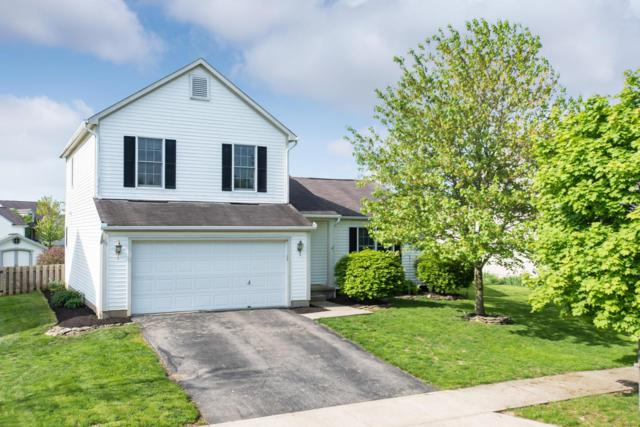 111 Limetree Drive, Delaware, OH 43015 (MLS #219015268) :: Berkshire Hathaway HomeServices Crager Tobin Real Estate