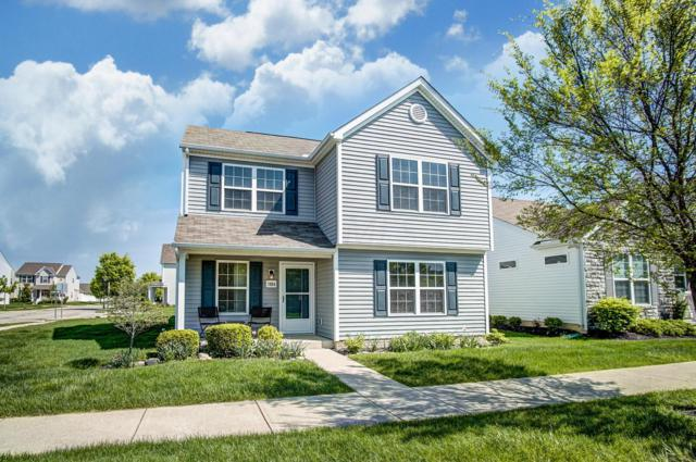5884 Ivy Branch Drive, Dublin, OH 43016 (MLS #219015282) :: Signature Real Estate