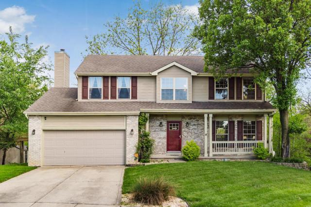 8332 Bedlington Drive, Reynoldsburg, OH 43068 (MLS #219015345) :: Huston Home Team