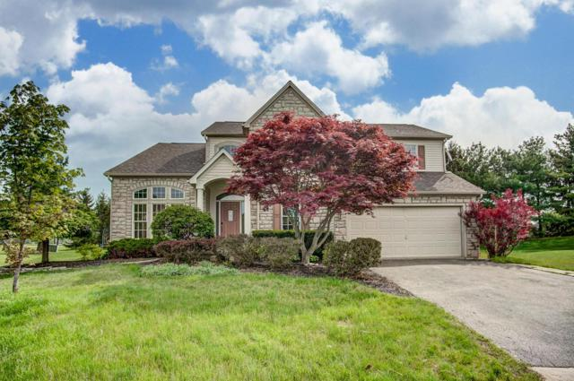 2841 Jericho Place, Delaware, OH 43015 (MLS #219015437) :: Huston Home Team