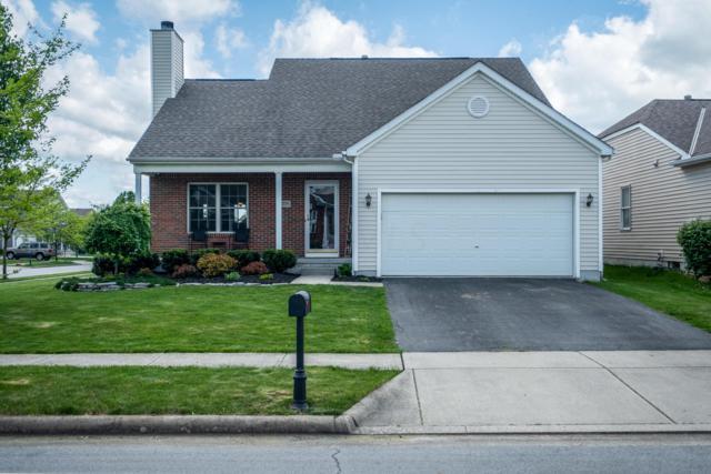 779 Towler Drive, Blacklick, OH 43004 (MLS #219015463) :: Signature Real Estate