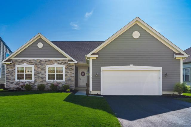 6725 Scioto Chase Boulevard, Powell, OH 43065 (MLS #219015519) :: The Clark Group @ ERA Real Solutions Realty