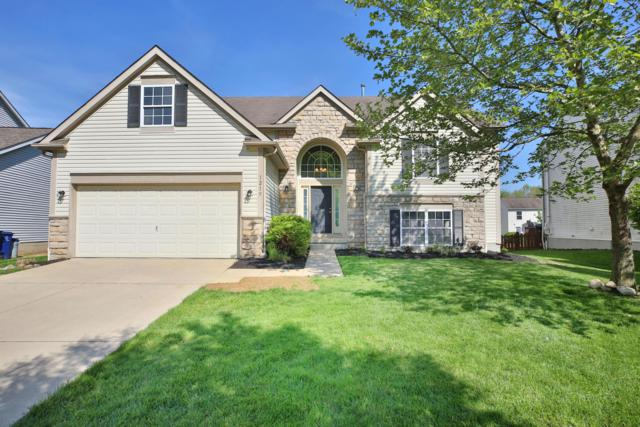 1219 Blacksmith Drive, Westerville, OH 43081 (MLS #219015561) :: Huston Home Team