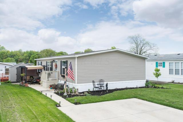 14 Birch Row Drive, Delaware, OH 43015 (MLS #219015652) :: RE/MAX ONE