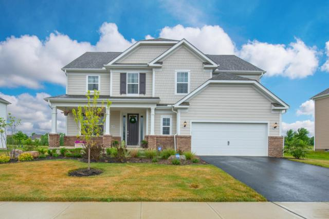 1158 Balmoral Drive, Delaware, OH 43015 (MLS #219015696) :: Signature Real Estate