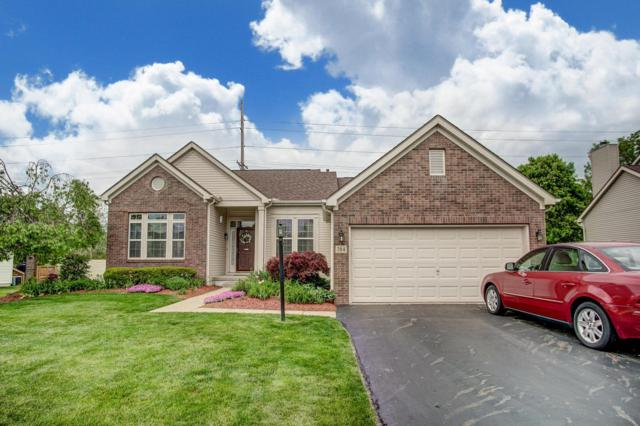 784 Manchester Circle N, Pickerington, OH 43147 (MLS #219015722) :: Signature Real Estate