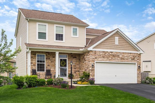 785 Brevard Circle, Pickerington, OH 43147 (MLS #219015771) :: Signature Real Estate