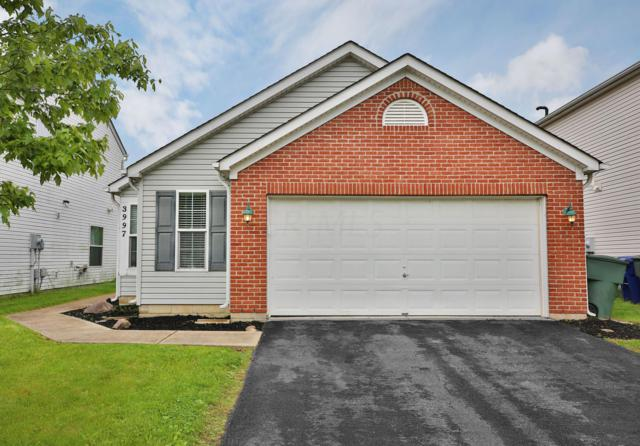 3997 Boyer Ridge Drive, Canal Winchester, OH 43110 (MLS #219015915) :: RE/MAX ONE