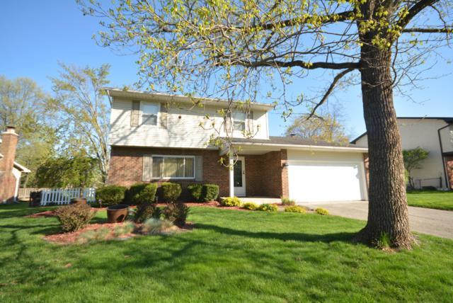 456 Tresham Road, Gahanna, OH 43230 (MLS #219015929) :: Huston Home Team