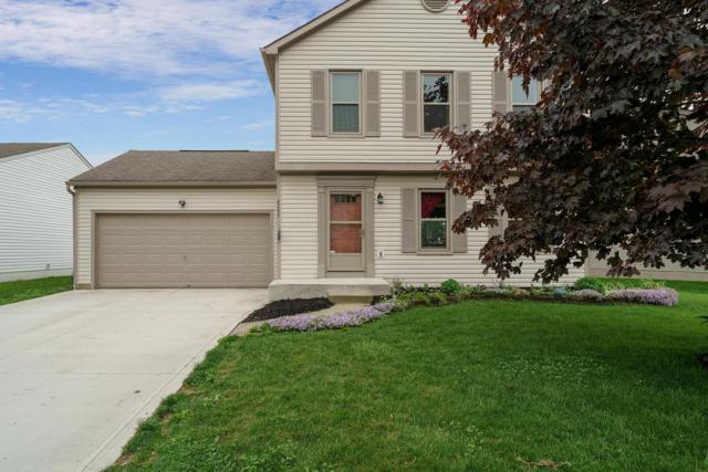 8209 Old Ivory Way, Blacklick, OH 43004 (MLS #219016045) :: Huston Home Team