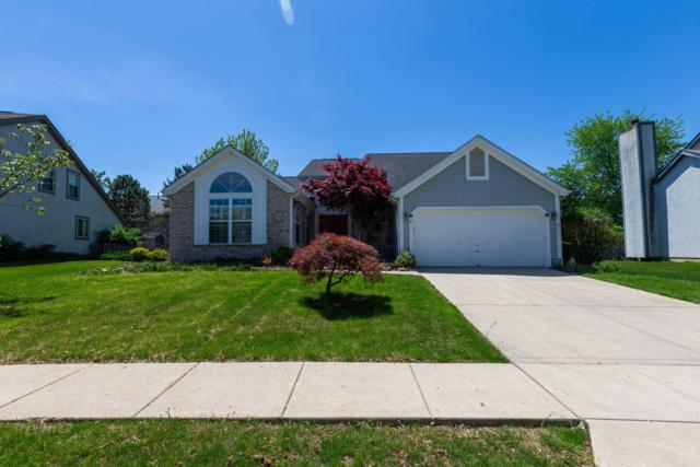 5403 Red Wynne Lane, Hilliard, OH 43026 (MLS #219016076) :: The Clark Group @ ERA Real Solutions Realty