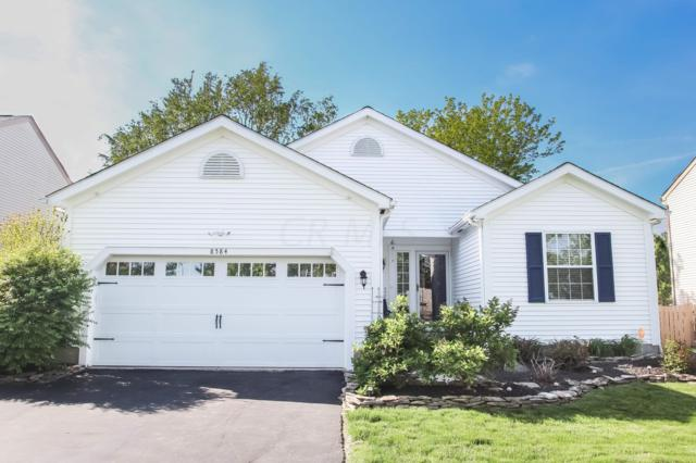 8584 Major Place, Galloway, OH 43119 (MLS #219016078) :: Signature Real Estate