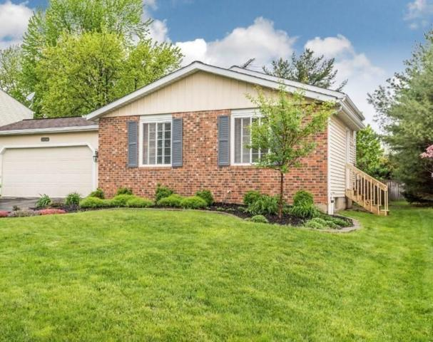 2256 Summit View Road, Powell, OH 43065 (MLS #219016257) :: Signature Real Estate