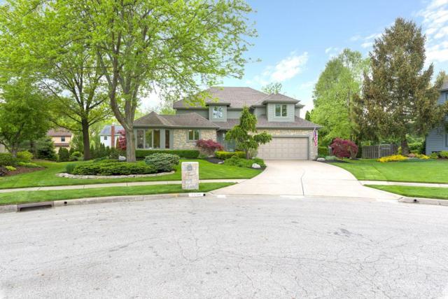 1254 Stone Ridge Court, Westerville, OH 43081 (MLS #219016405) :: Keller Williams Excel