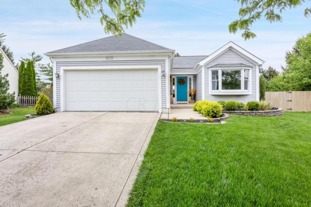 6039 Mcintyre Drive, Dublin, OH 43016 (MLS #219016407) :: Huston Home Team