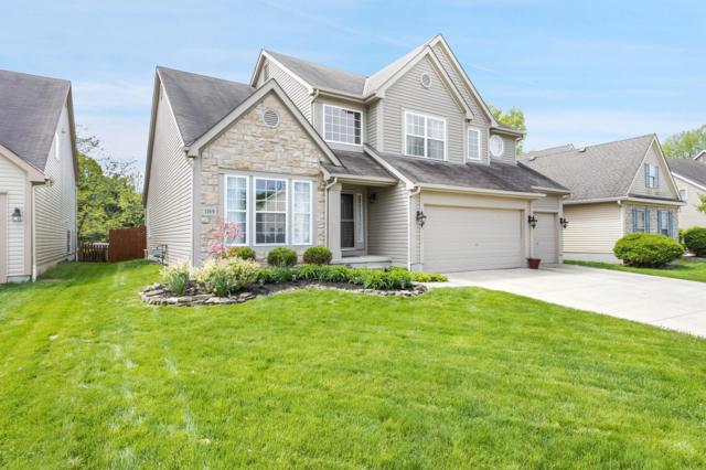 1169 Freshman Drive, Westerville, OH 43081 (MLS #219016494) :: Huston Home Team