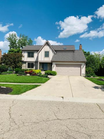 6212 Rising Sun Drive, Grove City, OH 43123 (MLS #219016554) :: The Clark Group @ ERA Real Solutions Realty