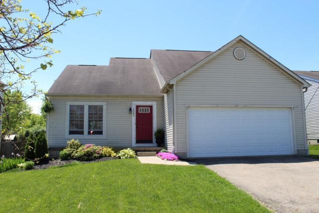 2063 Sondra Lane, Grove City, OH 43123 (MLS #219016607) :: Keller Williams Excel