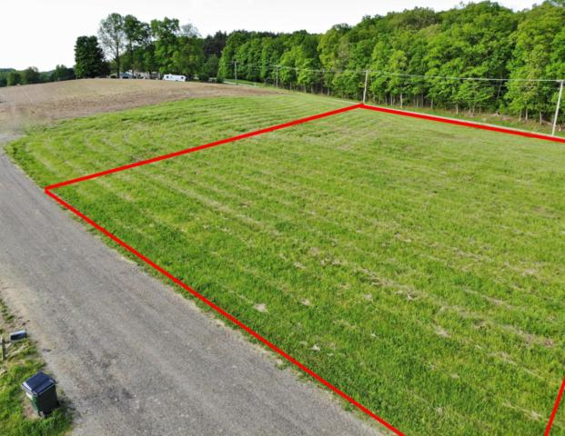 Lot 6 Honeysuckle Lane, Dresden, OH 43821 (MLS #219016650) :: ERA Real Solutions Realty