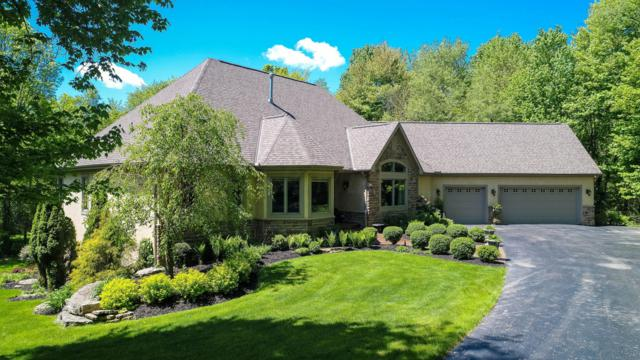 10208 Sage Creek Drive, Galena, OH 43021 (MLS #219016659) :: Berkshire Hathaway HomeServices Crager Tobin Real Estate