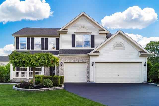 7516 Windsor Drive, Dublin, OH 43016 (MLS #219016696) :: Brenner Property Group | Keller Williams Capital Partners