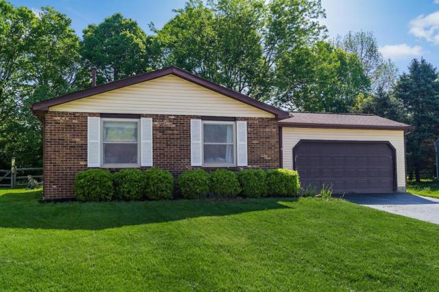 3746 Bridle Court, Columbus, OH 43221 (MLS #219016711) :: Huston Home Team