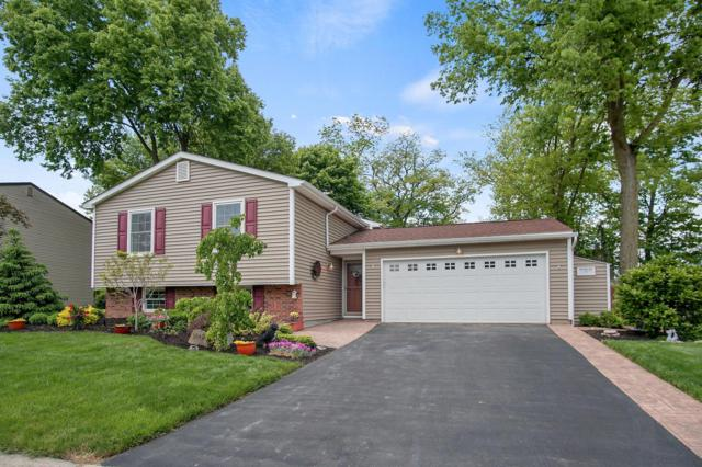 3840 Cypress Creek Drive, Columbus, OH 43228 (MLS #219016717) :: The Clark Group @ ERA Real Solutions Realty