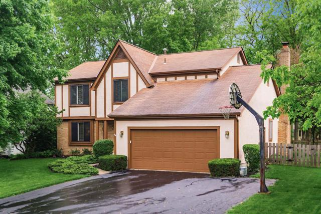 740 Whirlaway Court, Gahanna, OH 43230 (MLS #219016733) :: RE/MAX ONE
