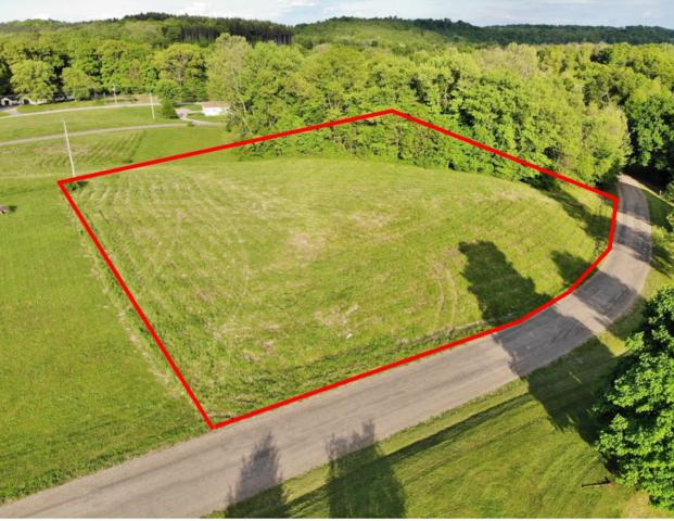 Lot 10 Goldenrod Drive, Dresden, OH 43821 (MLS #219016737) :: The Raines Group