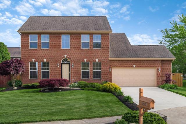 9031 Maren Court, Reynoldsburg, OH 43068 (MLS #219016798) :: Huston Home Team