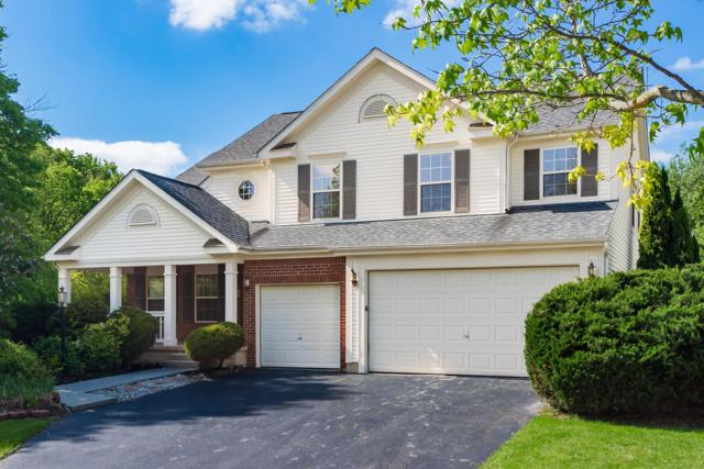 7651 Tullymore Drive, Dublin, OH 43016 (MLS #219016806) :: Signature Real Estate